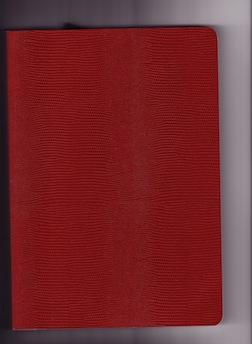 Journal-Patricia M
